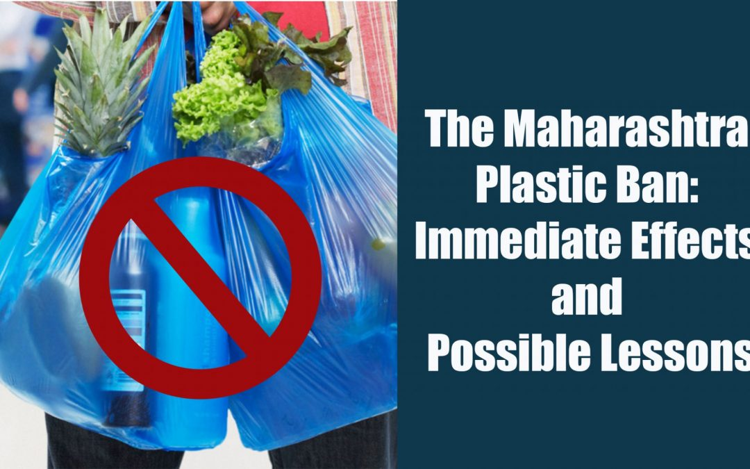The Maharashtra Plastic Ban: Immediate Effects and Possible Lessons